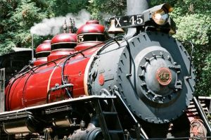 Skunk Train - looking glass.jpg